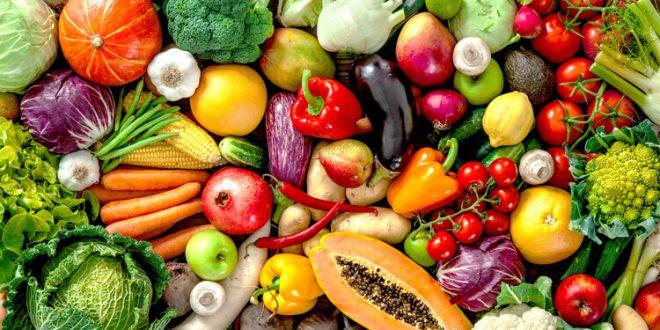 Sebze Nedir