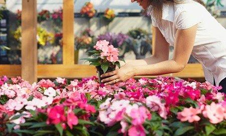 Rüyada Çiçek Almak